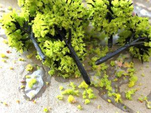 Nゲージ用の樹木