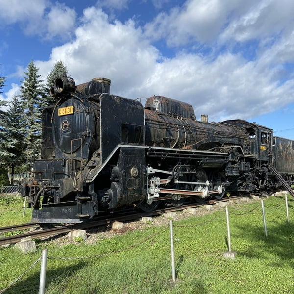 D51 311